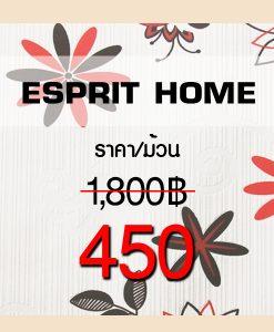 Esprit Home V.1