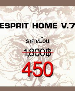 Esprit Home V.7