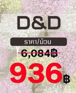 D&D (หน้ากว้าง)