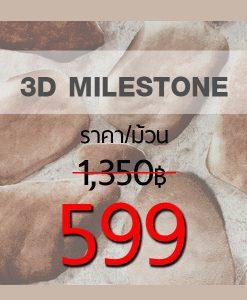3D Milestone