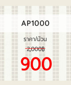 AP1000